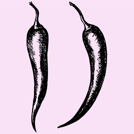 chili pepper set doodle style sketch illustration hand drawn vector Illustration