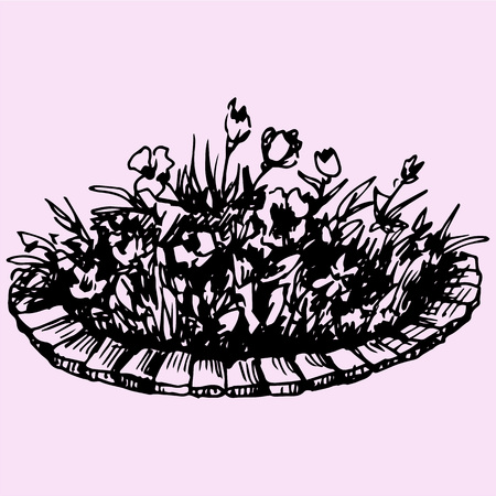 flowers in flowerbed doodle style sketch illustration hand drawn vector Illustration