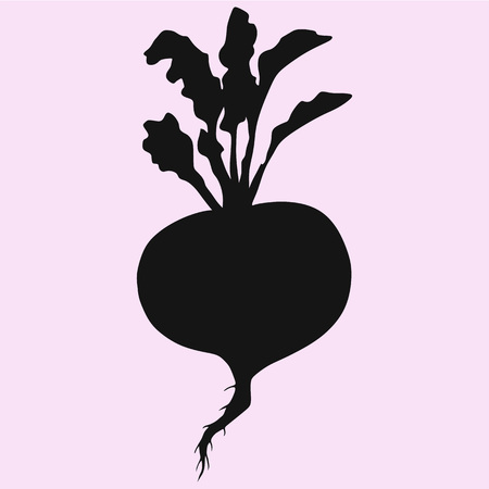 turnip with leaves vector silhouette isolated 矢量图像