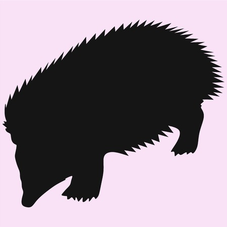 hedgehog vector silhouette isolated