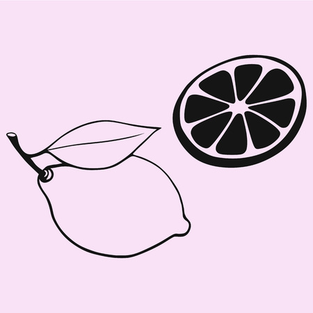 Lemon with leaf, slice of lemon, vector silhouette isolated. Illustration