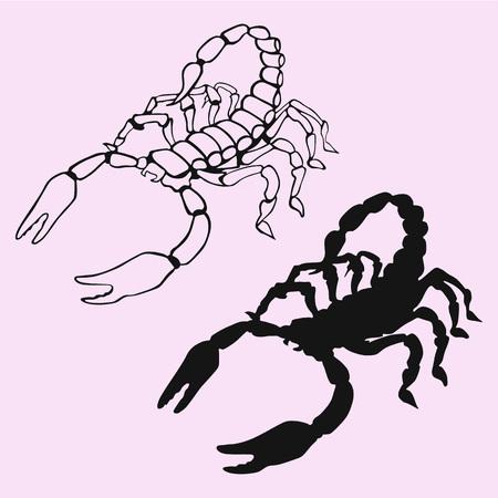 Scorpion silhouette vector isolated Illustration