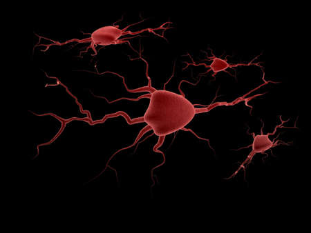 neurone: Nervous system from separate cages