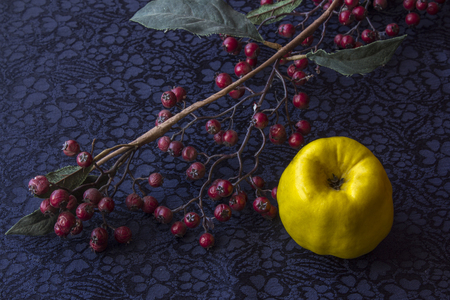 still life - ikebana of branch with dried berries and quince. Textile background.