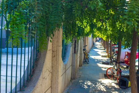 Narrow sidewalk along the fence and green trees. Green tunnel, parked cars and bicycles. In the distance, blur the background