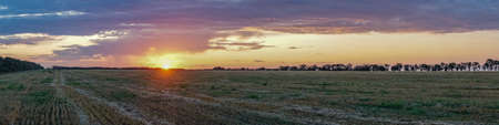 Panoramic view of Sunrise over the field.Summer evening in Blagoveshenskaya. Anapa