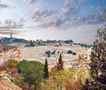 オリーブ山にエルサレムからの眺め。イスラエル