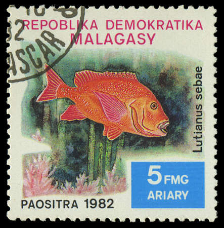 fish exhibition: MALAGASY - CIRCA 1982 Stamp shows image of a Lutianus sebae, circa 1982