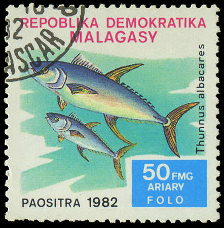 MALAGASY - CIRCA 1982 Stamp shows image of a Thunnus albacares, circa 1982 Stock Photo