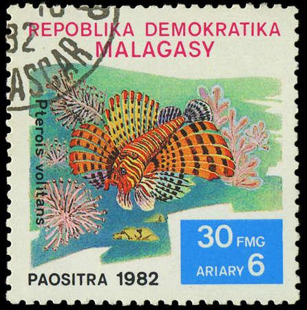 pterois volitans: MALAGASY - CIRCA 1982 Stamp shows image of a Pterois volitans, circa 1982