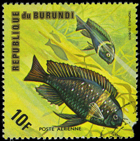 postmail: Republic of Burundi, - CIRCA 1975  A stamp printed by Burundi shows the fish Tropheus duboisi, circa 1975 Editorial