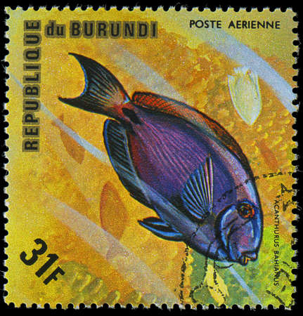 postmail: Republic of Burundi, - CIRCA 1975  A stamp printed by Burundi shows the fish Acanthurus bahianus, circa 1975