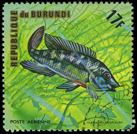 postmail: Republic of Burundi, - CIRCA 1975  A stamp printed by Burundi shows the fish Tilapia melanopleura, circa 1975