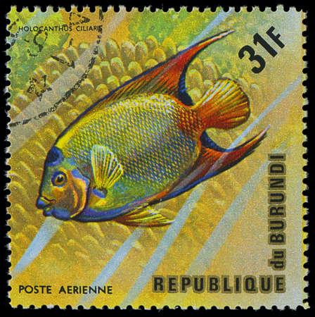 burundi: Republic of Burundi, - CIRCA 1975  A stamp printed by Burundi shows the fish Holocanthus ciliaris, circa 1975