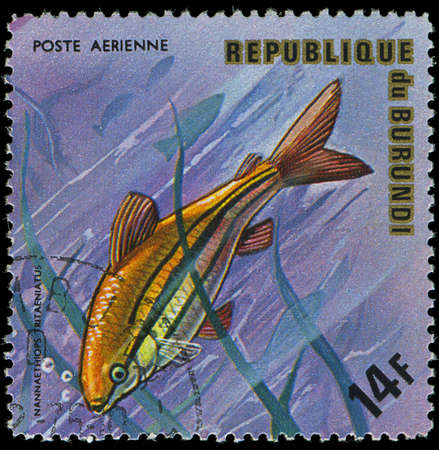 postmail: Republic of Burundi, - CIRCA 1975  A stamp printed by Burundi shows the fish Nannaethiops tritaeniatus, circa 1975
