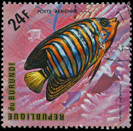 Republic of Burundi, - CIRCA 1975  A stamp printed by Burundi shows the fish Pygoplites diacanthus, circa 1975
