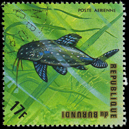 postmail: Republic of Burundi, - CIRCA 1975  A stamp printed by Burundi shows the fish Synodontis angelicus, circa 1975