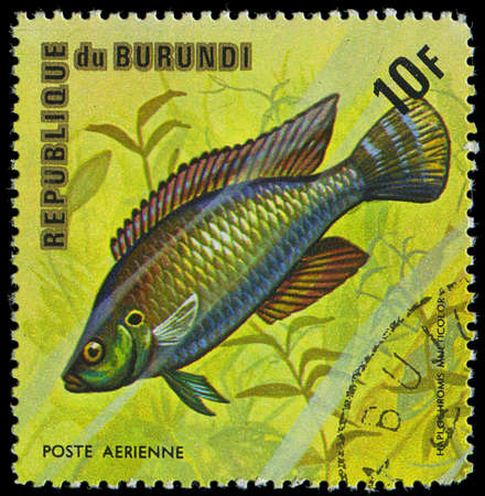 postmail: Republic of Burundi, - CIRCA 1975  A stamp printed by Burundi shows the fish Haplochromis multicolor, circa 1975