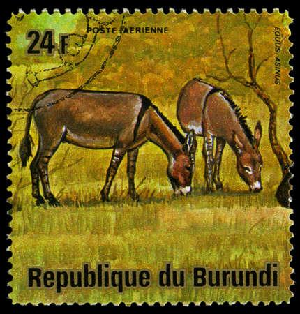 BURUNDI - CIRCA 1964: A stamp printed in Burundi shows a wild animal, circa 1964.