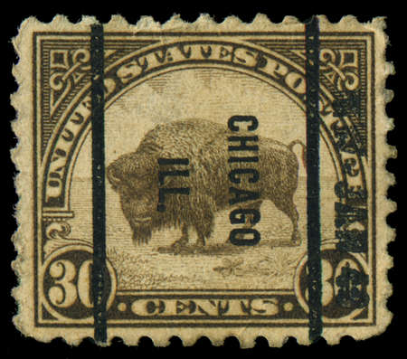 USA - CIRCA 1923: A stamp printed in the United States of America shows American buffalo, circa 1923 Stock Photo - 21826578