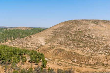 negev: Hills of the Negev Desert in Israel