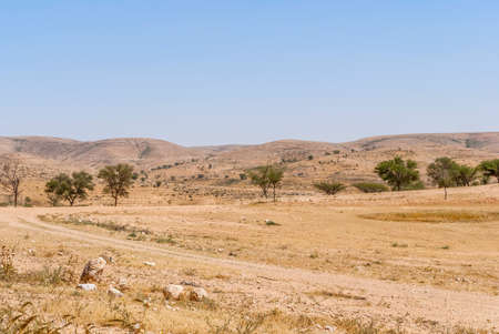 negev: Lonely Road In The Negev Desert, Israel
