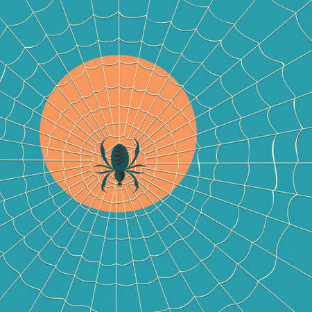 spider cartoon: Spider in a web on a background of the setting sun