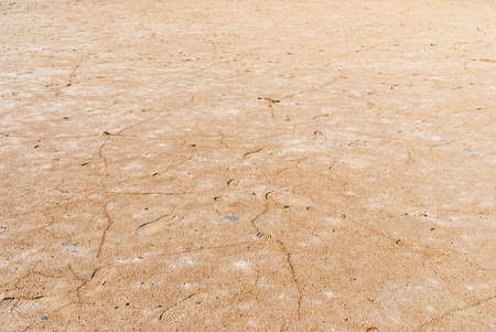 Dry salt lake bottom full of texture.The cracks form a distinctive lightning like pattern.