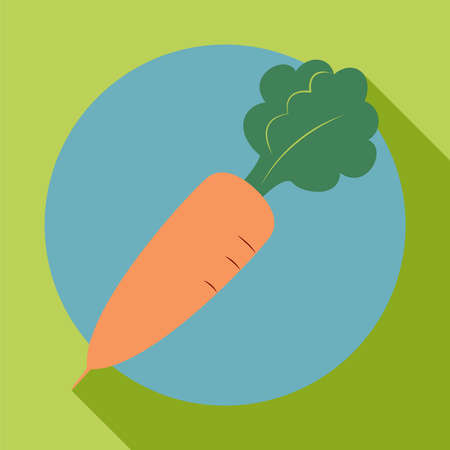 carotene: Carrot icon in the style of a flat design with shadow Illustration