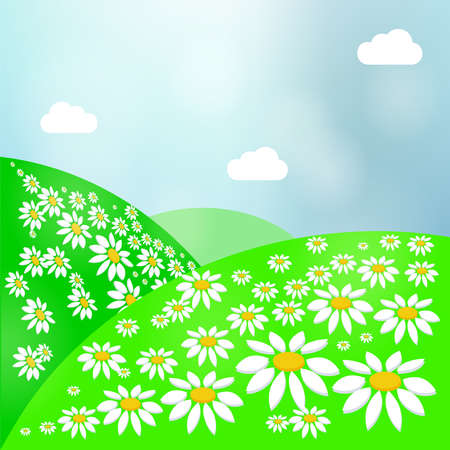 Summer landscape bright meadow with daisies, green grass and sky. Illustration