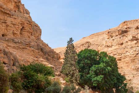 Wadi Qelt in Judean desert around St. George Orthodox Monastery