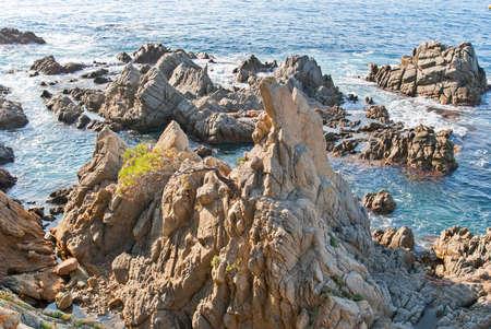 Platja Fenals Fanals Beach in Lloret de Mar at Costa Brava of Catalonia Girona Spain Stockfoto