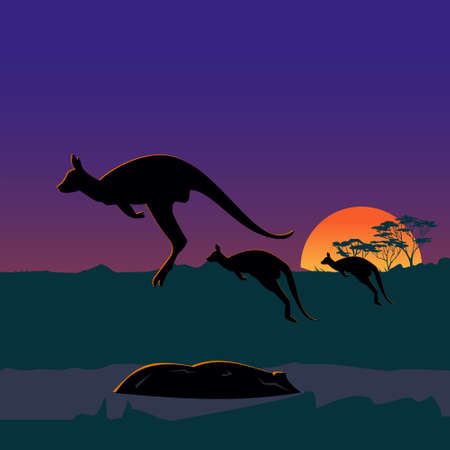 Three large kangaroos on the Australian plains, wild nature of Australia. Realistic vector landscape. Silhouettes of animals and plants.Sunset. Illustration