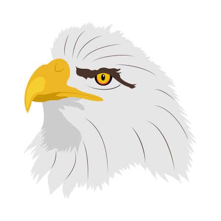 American bald eagle. Illustration of a eagles head in profile.