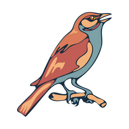 Sparrow, a small city bird. Illustration in the cartoon style. Vector isolated image on a white background.