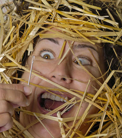 tenacity: Woman finds a needle in a haystack! Stock Photo