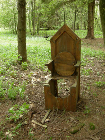 outhouse: An old forest outhouse stands along