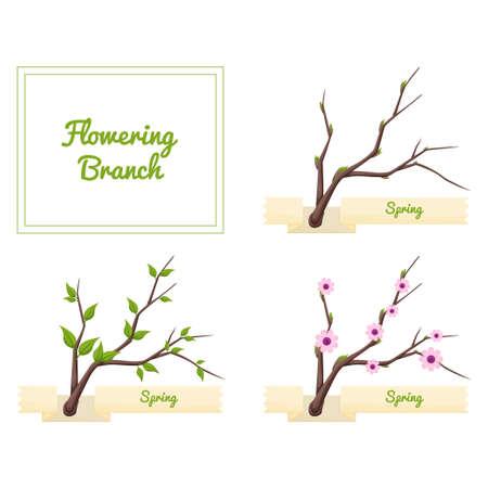flowering: Flowering Branch
