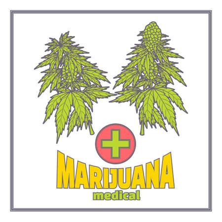 medica: Bushes of Marijuana Medica Flat