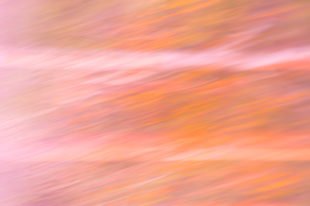 flipped: Motion blurred and 90 degrees flipped forest landscape