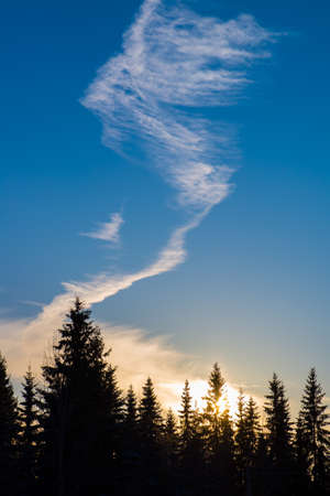 Smoke cloud in sunset sky Stock Photo