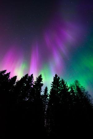 northern: Colorful northern lights