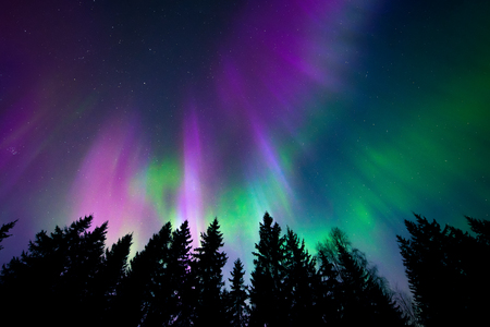 green light: Colorful northern lights