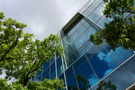 glass building: Office building surrounded by alot of trees under blue sky