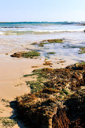 Ozean Wellen angespült entlang der Küstenlinie bei Portsea Strand Melbourne Standard-Bild