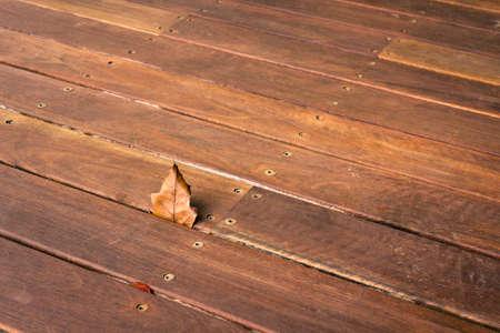 Piece of Herbstblatt eingekeilt zwischen dem Holzdeck