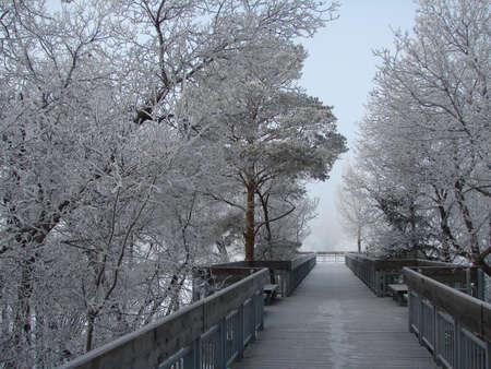 霜でワスカナ湖観