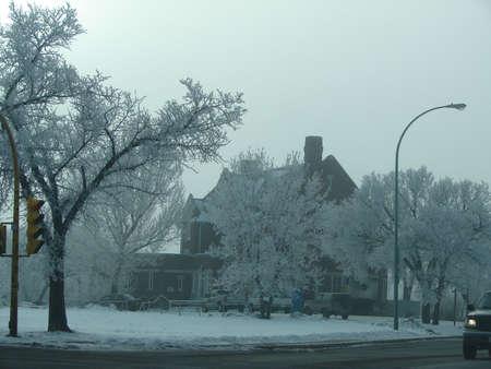凍りつくような朝 写真素材