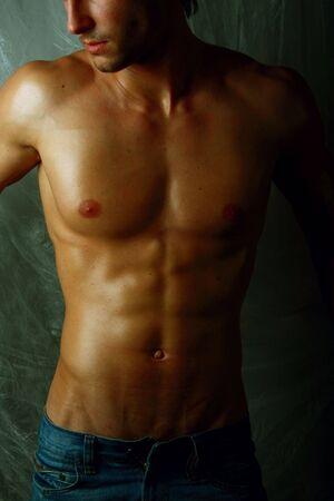 Close-up Muscular male torso photo. Stock Photo - 5593767