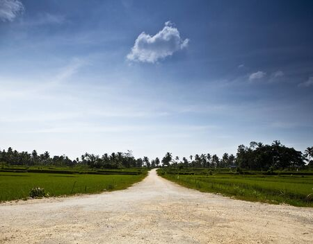 Amazing tropical landscape  Indonesia - Bali   Stock Photo - 13066289